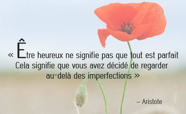 citation-Aristote &#23...